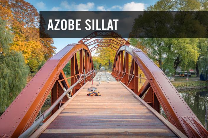Azobe sillat, Skandinaviska Träimport.